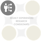 Highly Experience  Research Consultants